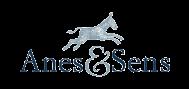 Asinerie logo